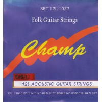 Champ CAG-12 Acoustic Bronze 12-String 10-47