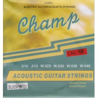 Champ CAG-700 Acoustic Silver 10-46