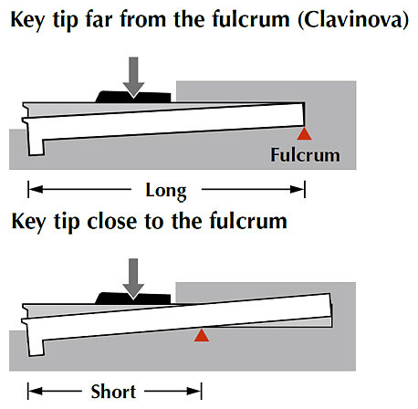 Keys have a long distance to the fulcrum offering easy-to-play touch, even to the base of each key.